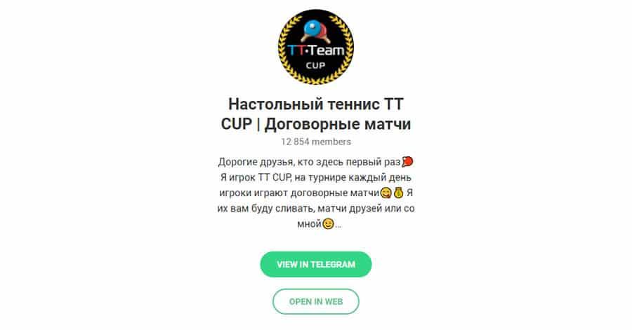 ТТ КАП настольный теннис